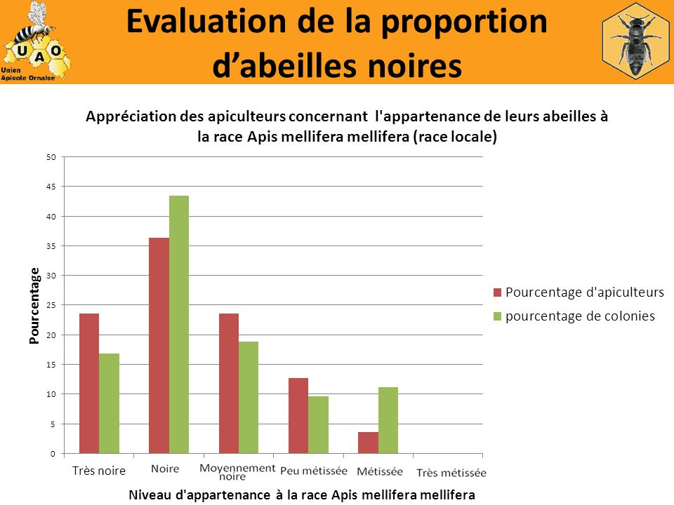 Evaluation de la proportion d'abeilles noires
