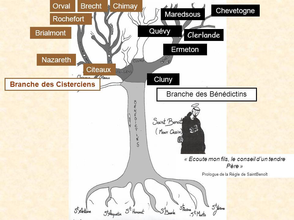 Branche des Cisterciens