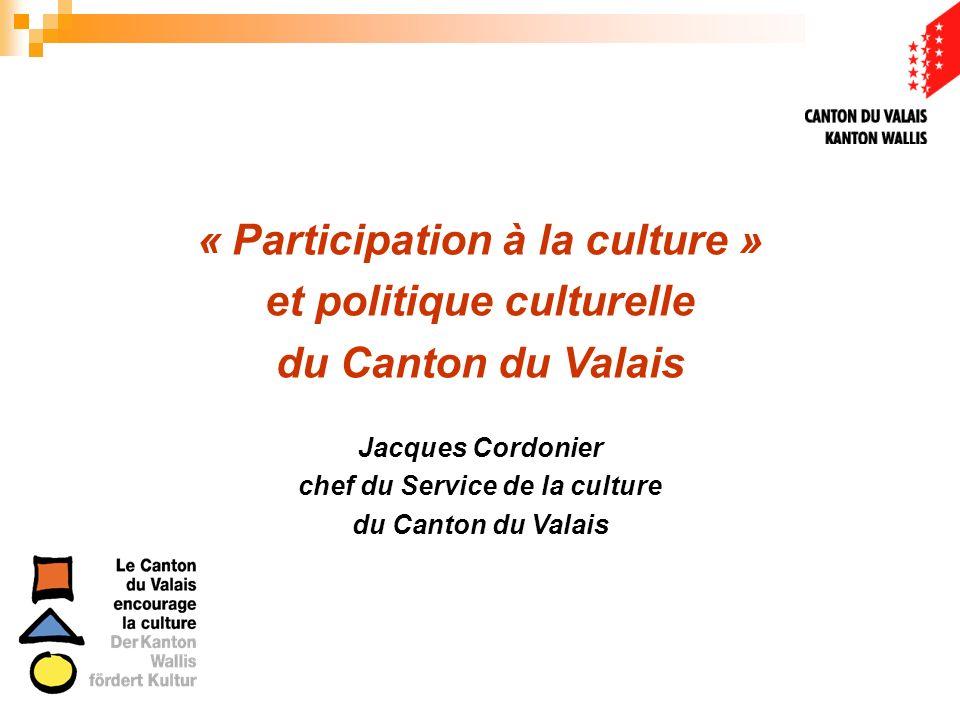 « Participation à la culture » et politique culturelle