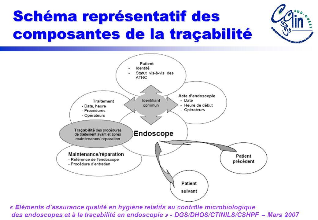 Schéma représentatif des composantes de la traçabilité