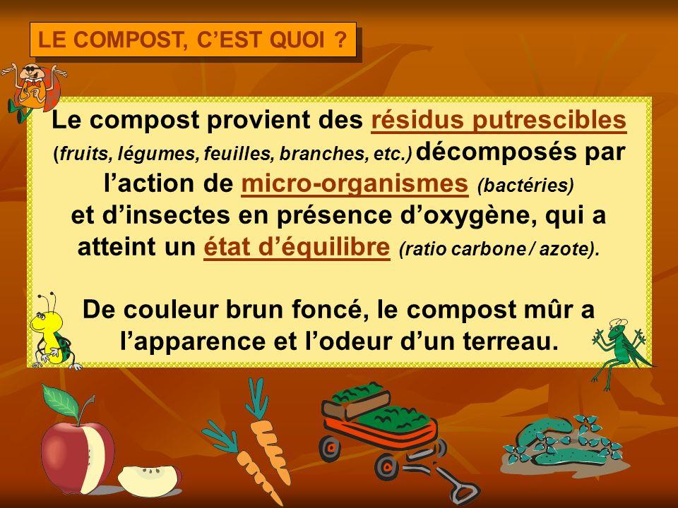 Le compost provient des résidus putrescibles