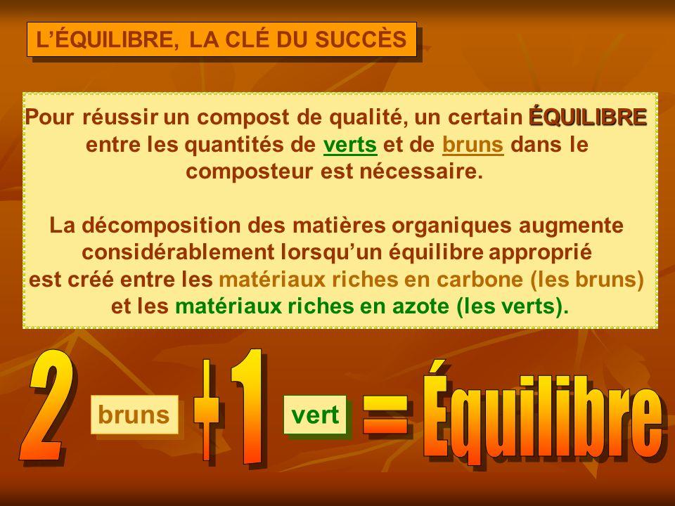 2 1 + Équilibre = bruns vert L'ÉQUILIBRE, LA CLÉ DU SUCCÈS