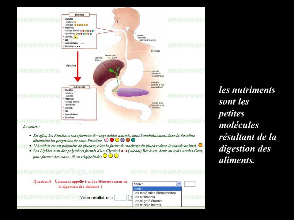 les nutriments sont les petites molécules résultant de la digestion des aliments.