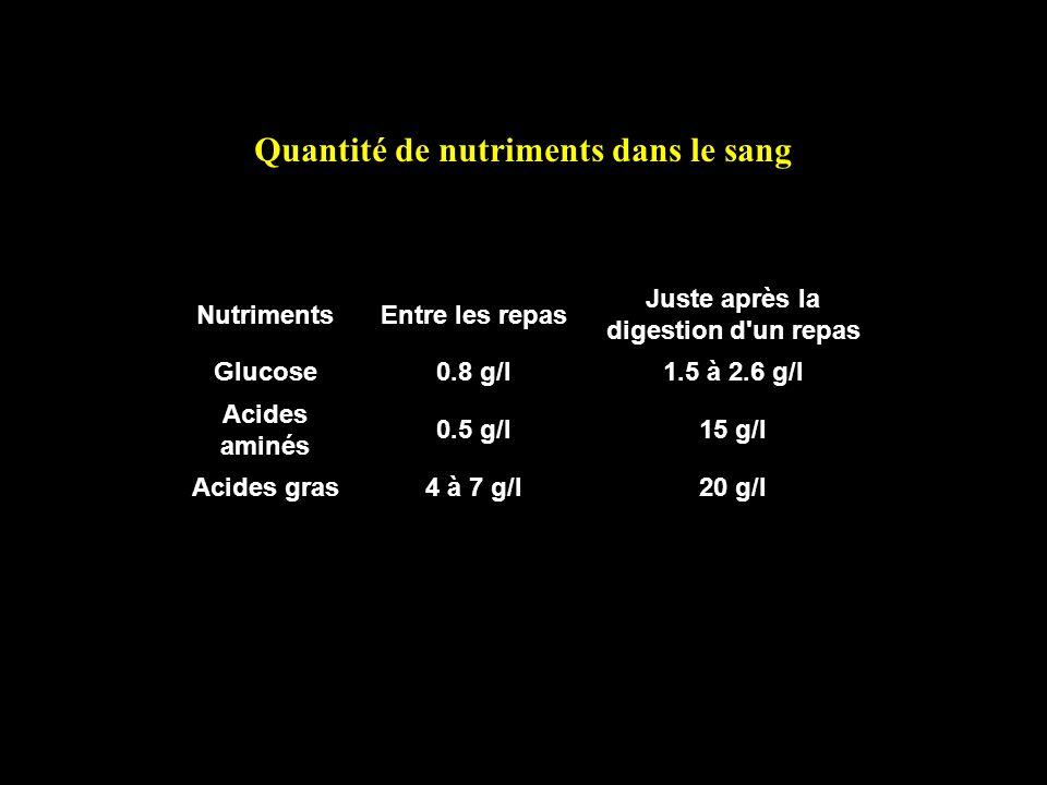 Quantité de nutriments dans le sang