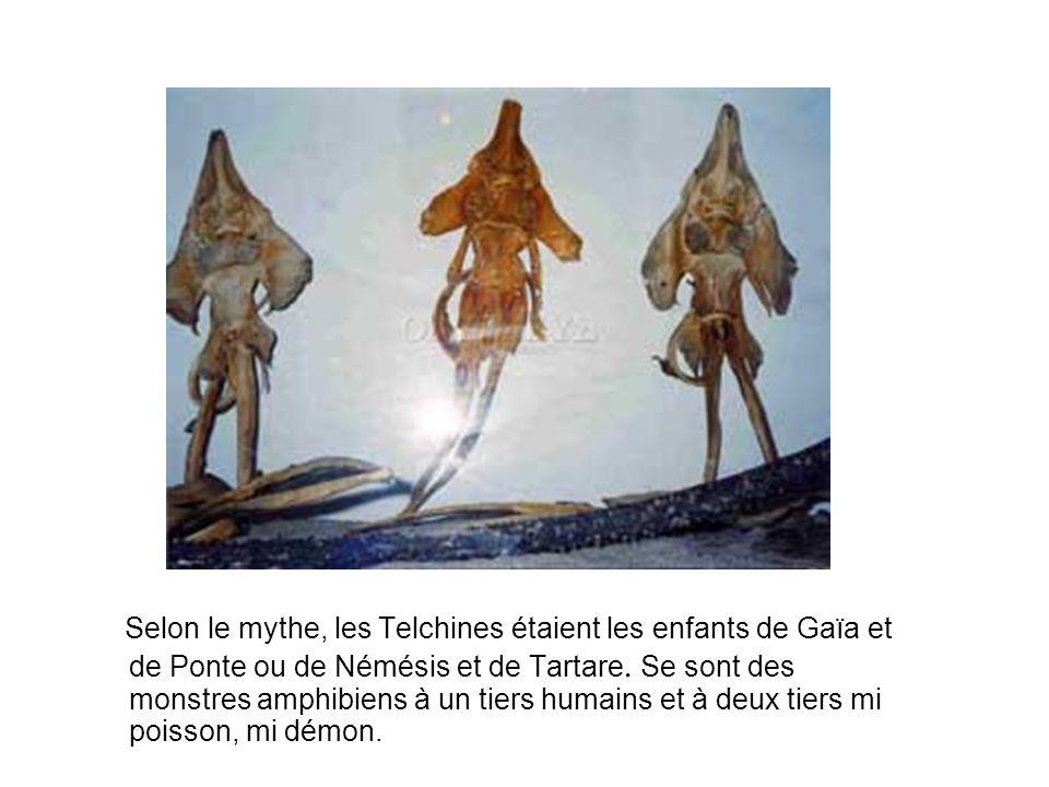 Selon le mythe, les Telchines étaient les enfants de Gaïa et de Ponte ou de Némésis et de Tartare.