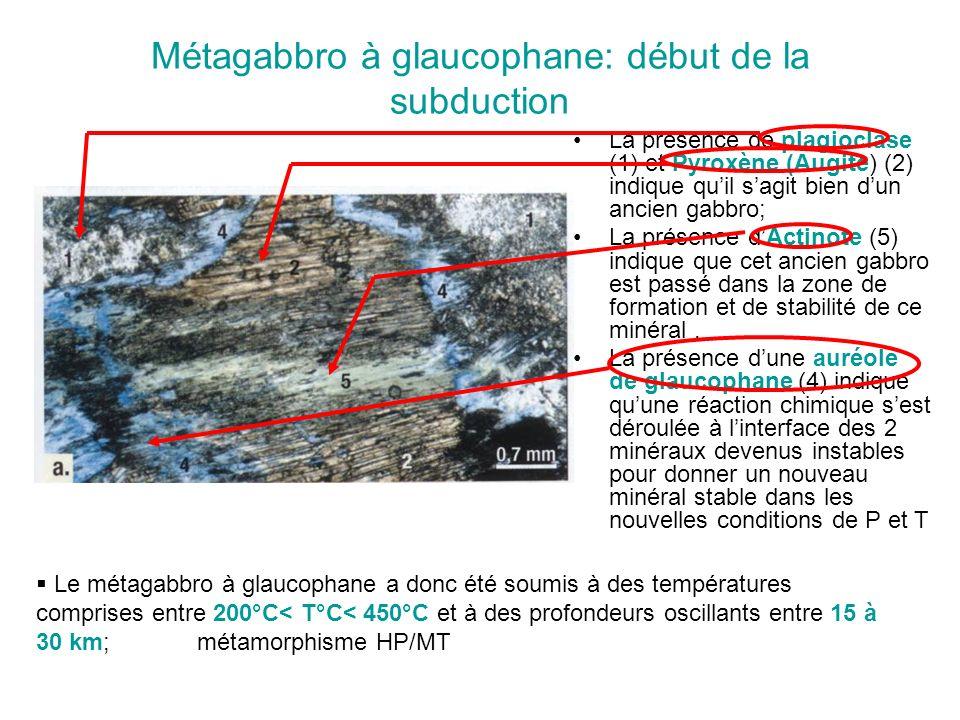 Métagabbro à glaucophane: début de la subduction
