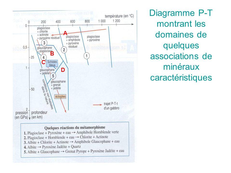 Diagramme P-T montrant les domaines de quelques associations de minéraux caractéristiques