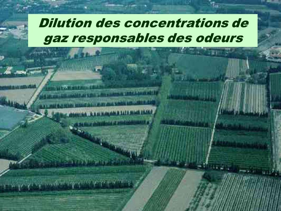 Dilution des concentrations de gaz responsables des odeurs