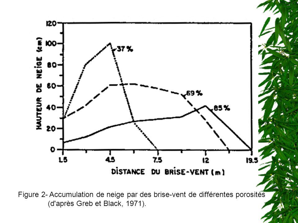 Figure 2- Accumulation de neige par des brise-vent de différentes porosités