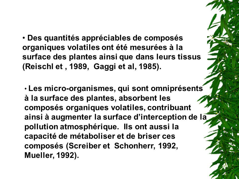 Des quantités appréciables de composés organiques volatiles ont été mesurées à la surface des plantes ainsi que dans leurs tissus (Reischl et , 1989, Gaggi et al, 1985).