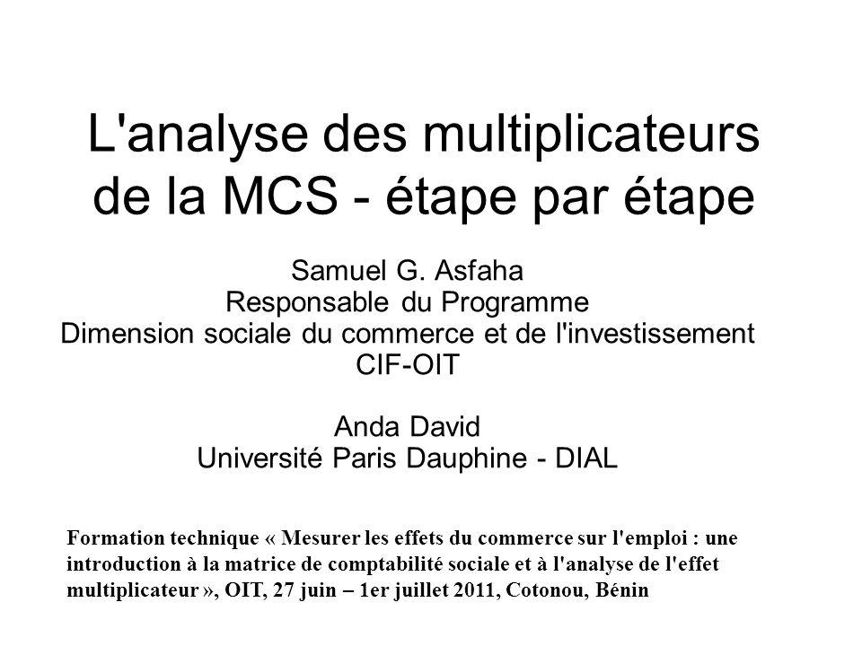 L analyse des multiplicateurs de la MCS - étape par étape