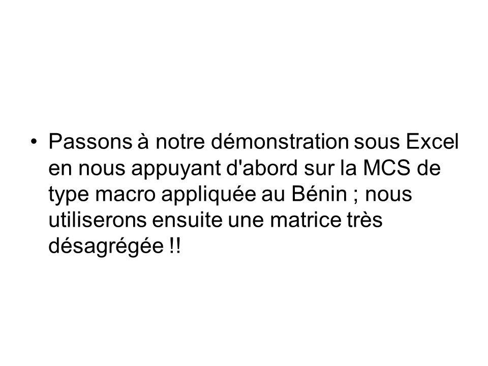 Passons à notre démonstration sous Excel en nous appuyant d abord sur la MCS de type macro appliquée au Bénin ; nous utiliserons ensuite une matrice très désagrégée !!