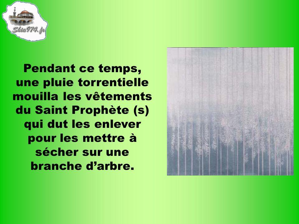 Pendant ce temps, une pluie torrentielle mouilla les vêtements du Saint Prophète (s) qui dut les enlever pour les mettre à sécher sur une branche d'arbre.
