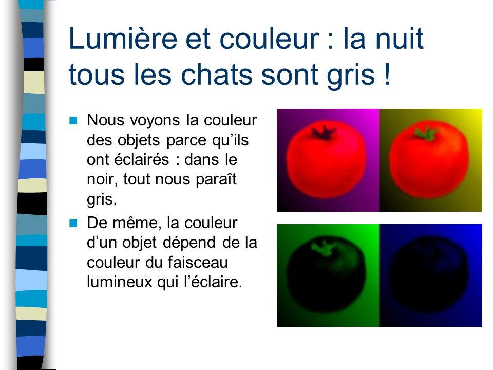 Lumière et couleur : la nuit tous les chats sont gris !