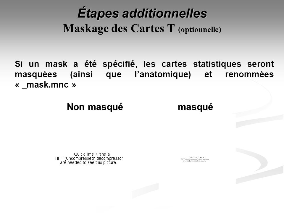 Étapes additionnelles Maskage des Cartes T (optionnelle)