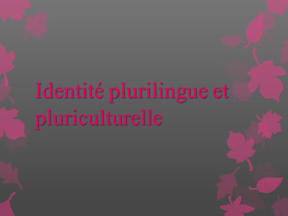 Identité plurilingue et pluriculturelle