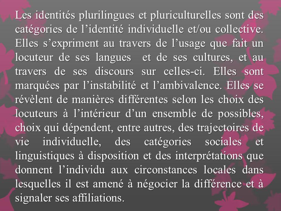 Les identités plurilingues et pluriculturelles sont des catégories de l'identité individuelle et/ou collective.