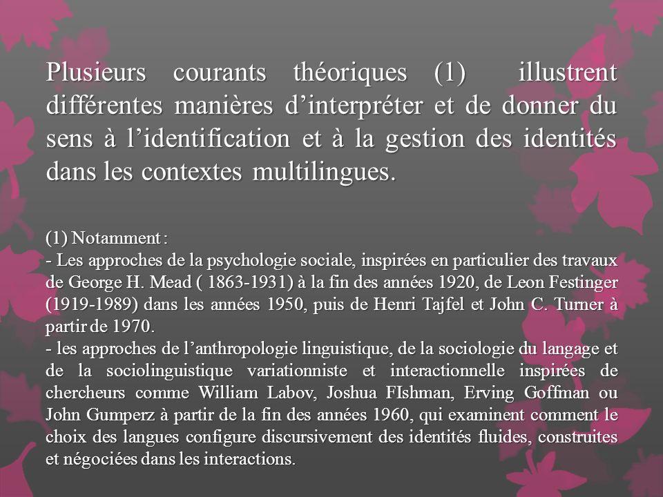 Plusieurs courants théoriques (1) illustrent différentes manières d'interpréter et de donner du sens à l'identification et à la gestion des identités dans les contextes multilingues.