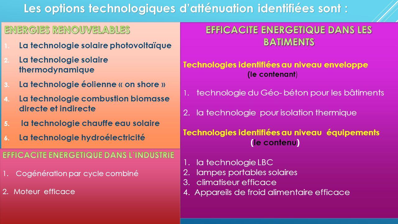Les options technologiques d'atténuation identifiées sont :
