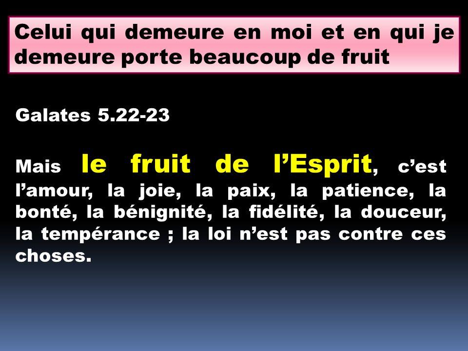 Celui qui demeure en moi et en qui je demeure porte beaucoup de fruit
