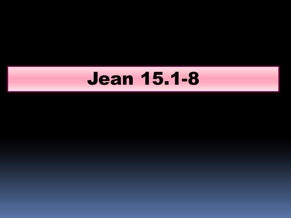 Jean 15.1-8