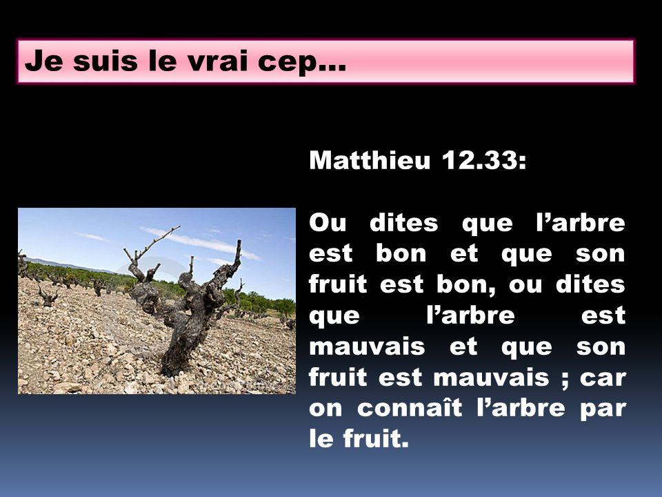 Je suis le vrai cep… Matthieu 12.33: