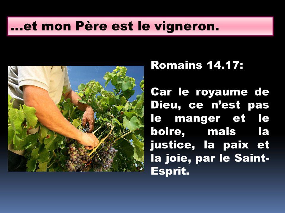 …et mon Père est le vigneron.