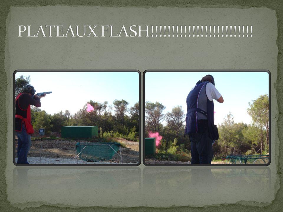 PLATEAUX FLASH!!!!!!!!!!!!!!!!!!!!!!!!!