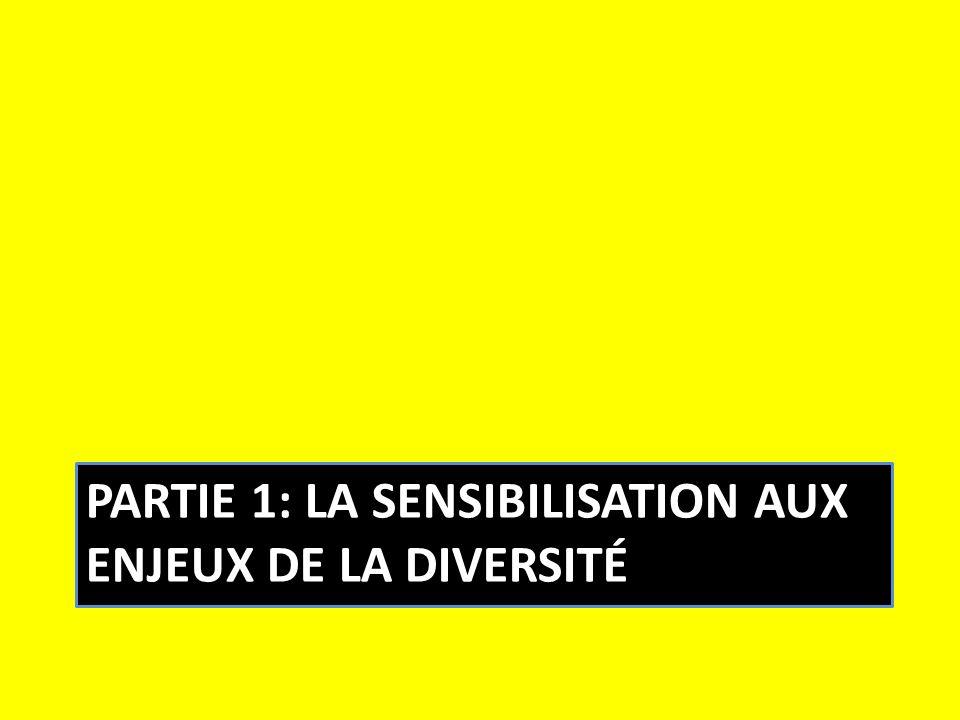 Partie 1: la sensibilisation aux enjeux de la diversité