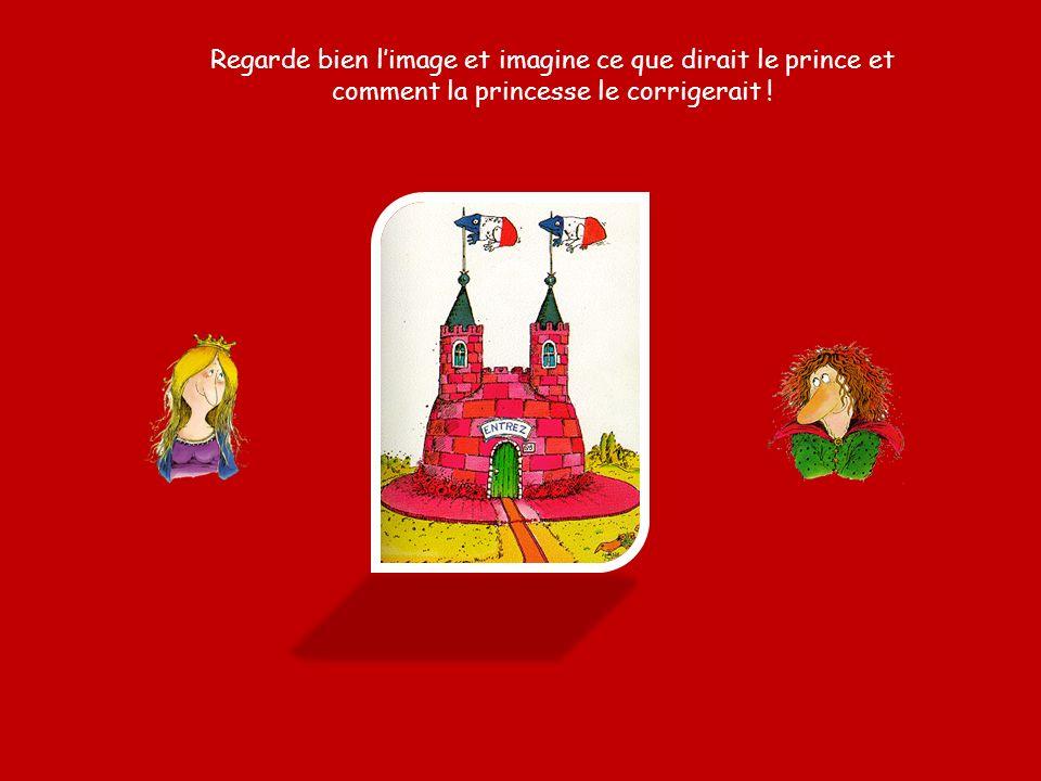 Regarde bien l'image et imagine ce que dirait le prince et comment la princesse le corrigerait !