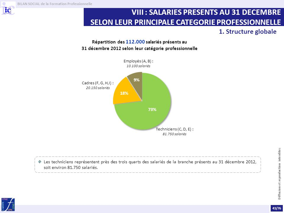 VIII : SALARIES PRESENTS AU 31 DECEMBRE SELON LEUR PRINCIPALE CATEGORIE PROFESSIONNELLE