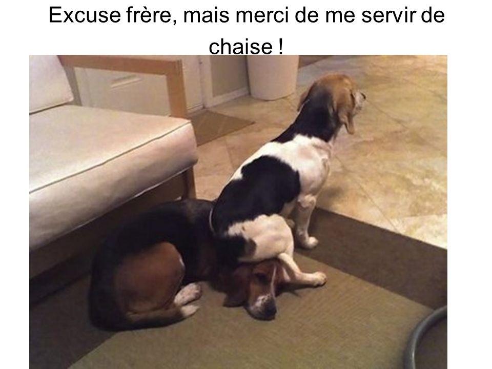 Excuse frère, mais merci de me servir de chaise !
