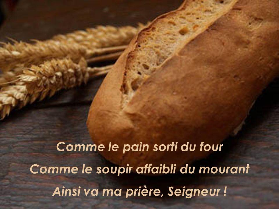 Comme le pain sorti du four Comme le soupir affaibli du mourant