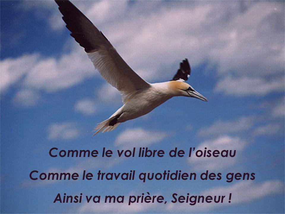 Comme le vol libre de l'oiseau Comme le travail quotidien des gens