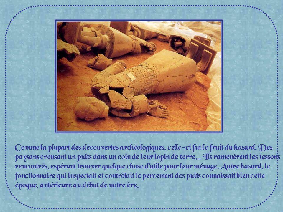 Comme la plupart des découvertes archéologiques, celle-ci fut le fruit du hasard.