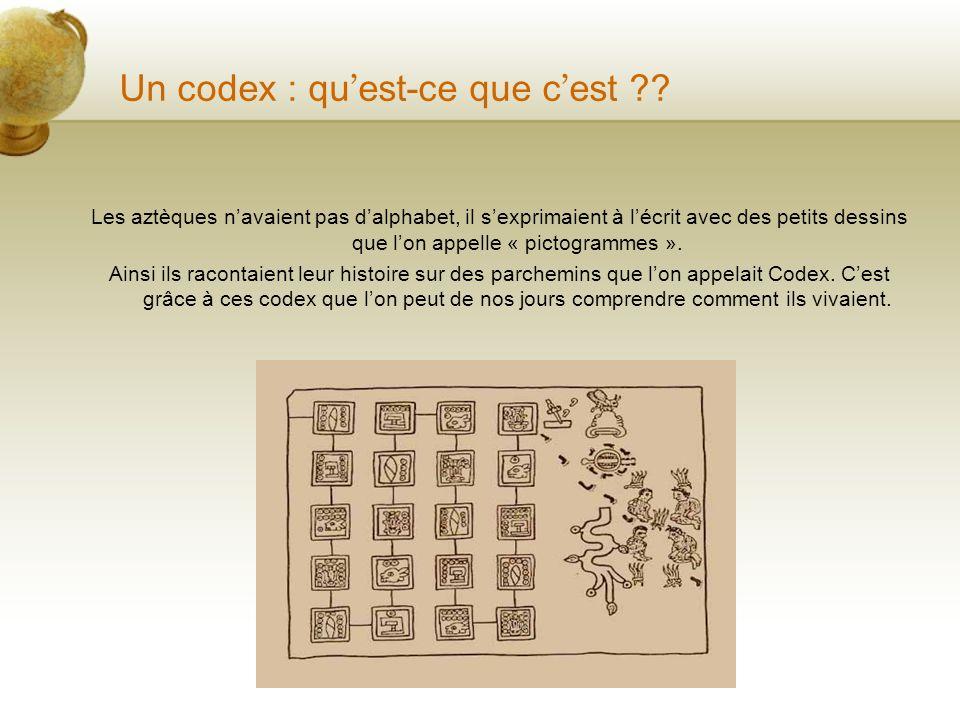 Un codex : qu'est-ce que c'est