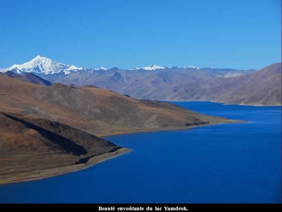 Beauté envoûtante du lac Yamdrok.