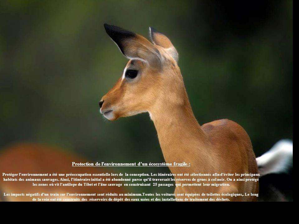 Protection de l environnement d'un écosystème fragile :