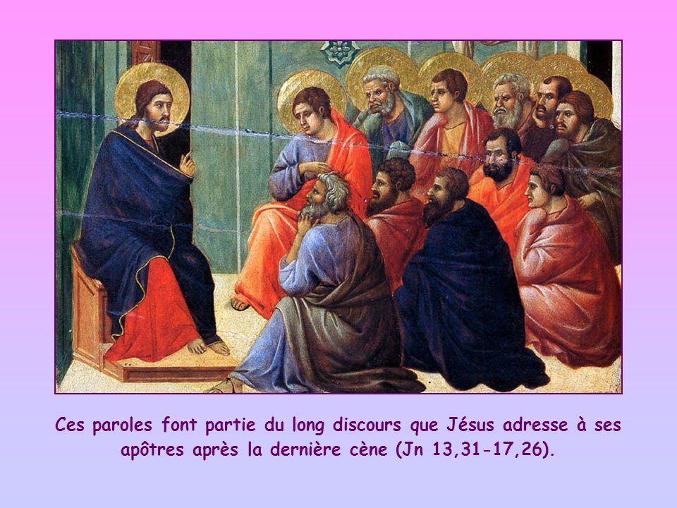 Ces paroles font partie du long discours que Jésus adresse à ses apôtres après la dernière cène (Jn 13,31-17,26).