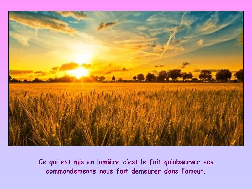 Ce qui est mis en lumière c'est le fait qu'observer ses commandements nous fait demeurer dans l'amour.