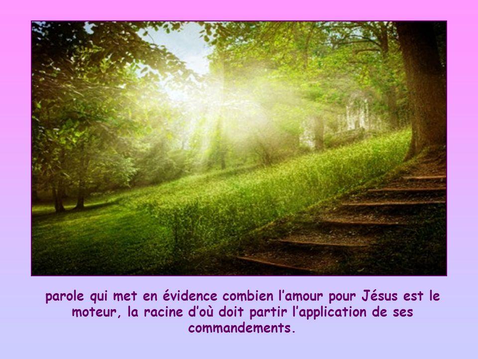 parole qui met en évidence combien l'amour pour Jésus est le moteur, la racine d'où doit partir l'application de ses commandements.