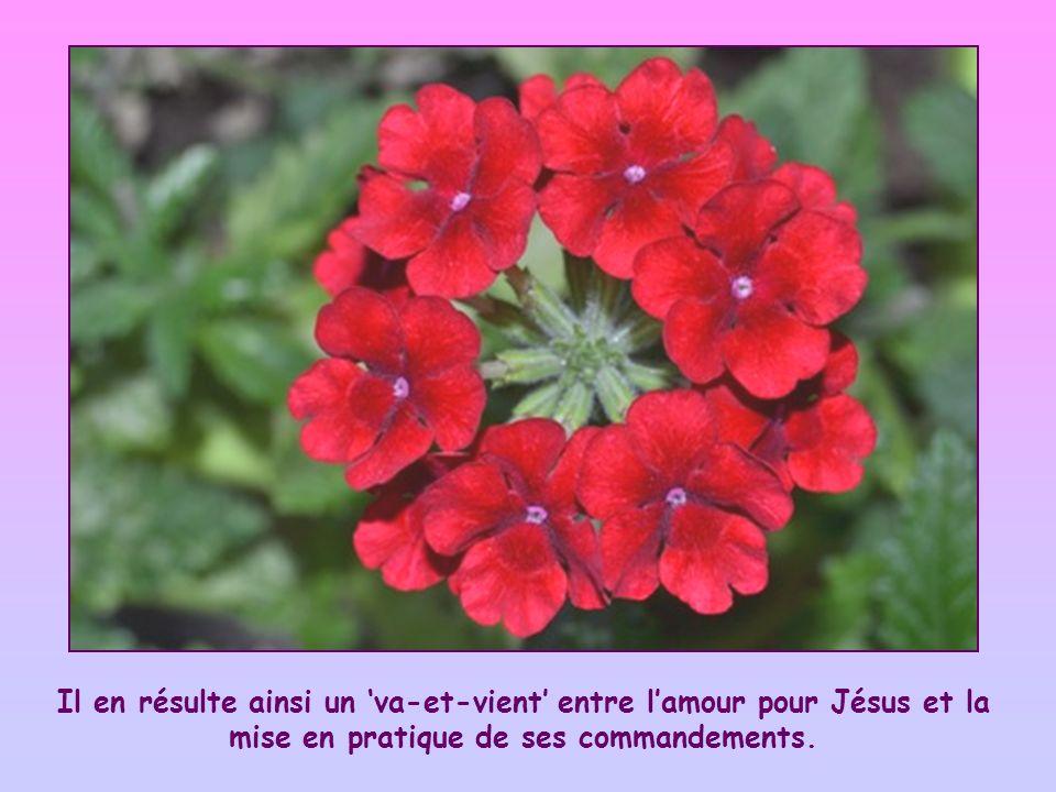 Il en résulte ainsi un 'va-et-vient' entre l'amour pour Jésus et la mise en pratique de ses commandements.