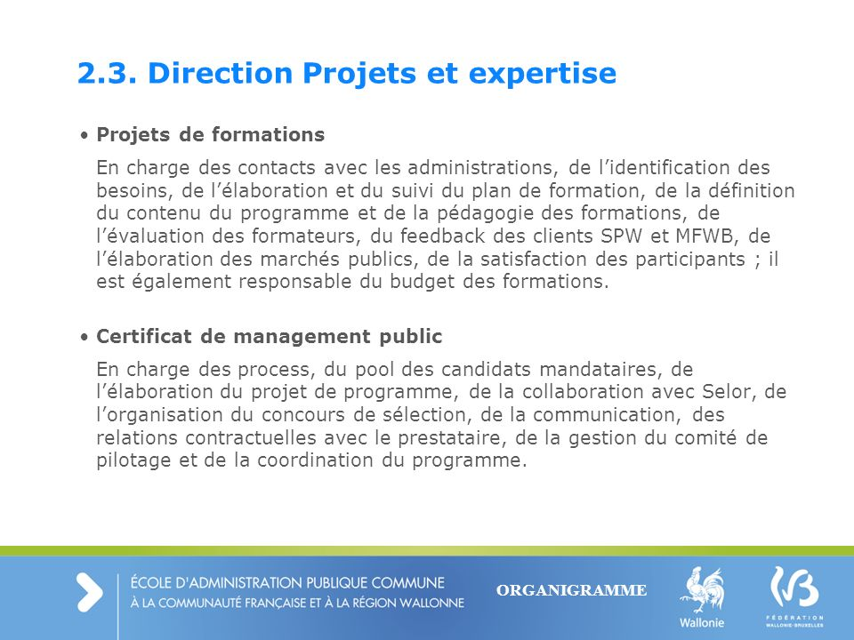 2.3. Direction Projets et expertise