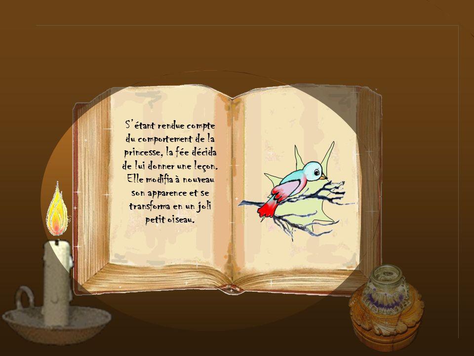 S'étant rendue compte du comportement de la princesse, la fée décida de lui donner une leçon. Elle modifia à nouveau son apparence et se transforma en un joli petit oiseau.