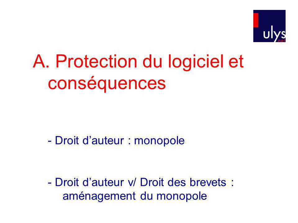 Protection du logiciel et conséquences