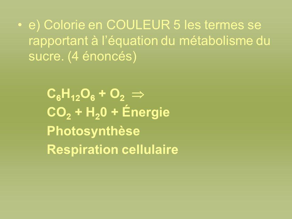 e) Colorie en COULEUR 5 les termes se rapportant à l'équation du métabolisme du sucre. (4 énoncés)