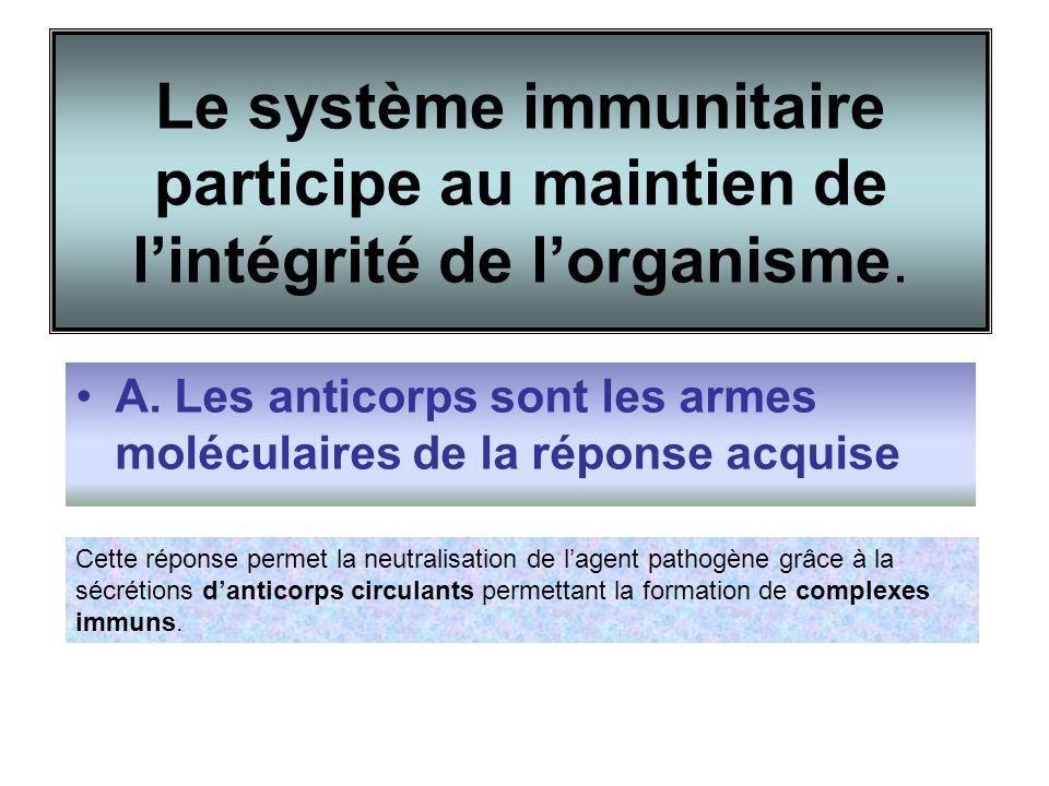 Le système immunitaire participe au maintien de l'intégrité de l'organisme.