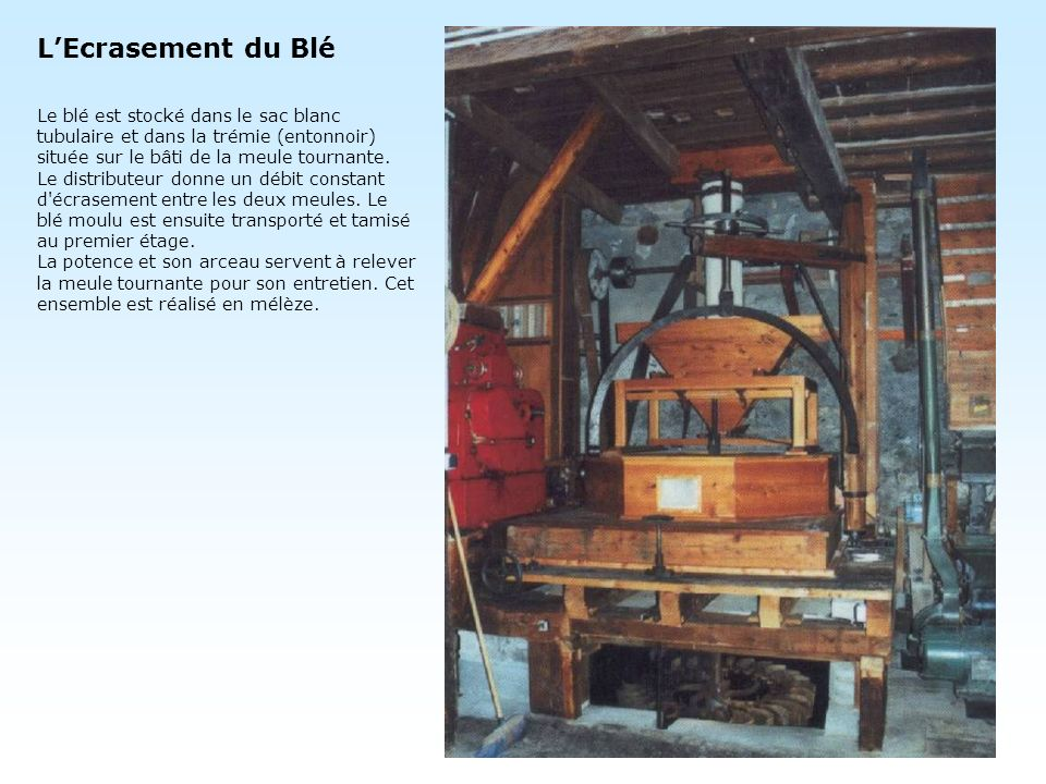 L'Ecrasement du Blé Le blé est stocké dans le sac blanc tubulaire et dans la trémie (entonnoir) située sur le bâti de la meule tournante.