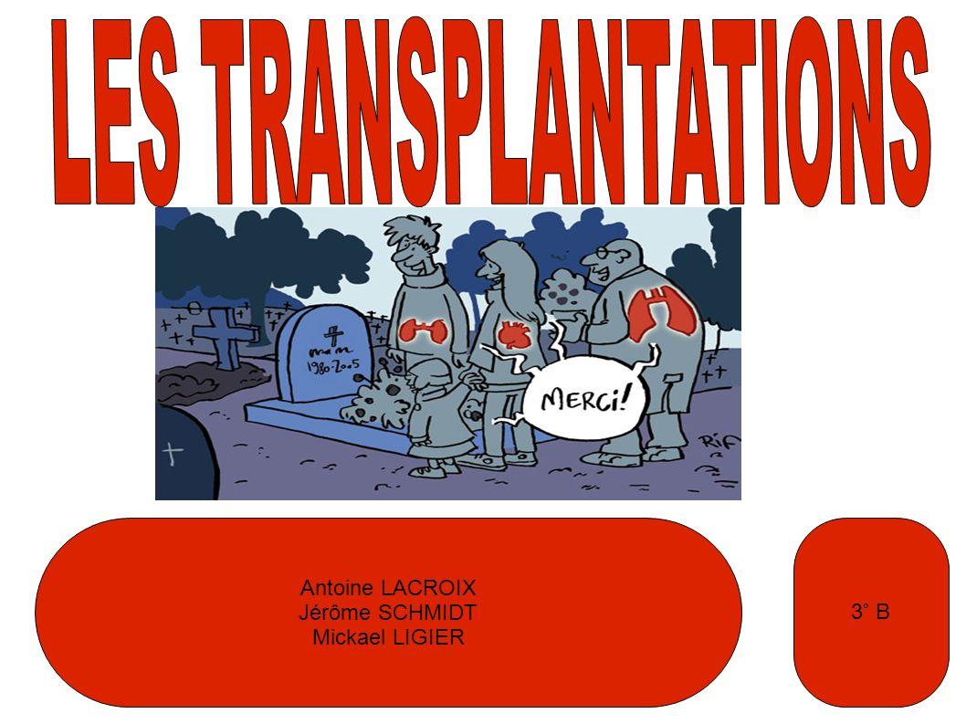 LES TRANSPLANTATIONS Antoine LACROIX Jérôme SCHMIDT Mickael LIGIER