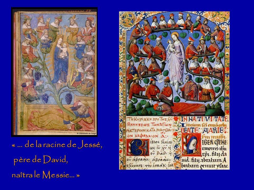 « … de la racine de Jessé, père de David, naîtra le Messie… »
